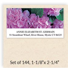 Shop Connect Wrap Around Address Labels at Colorful Images