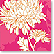 Peonies in Color - Design Collections from Colorful Images