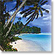 Tropical Paradise - Design Collections from Colorful Images