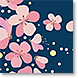 Pink Blossom - Design Collections from Colorful Images