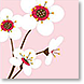 Cherry Blossom - Design Collections from Colorful Images
