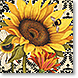 French Sunflower - Design Collections from Colorful Images