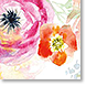 Pretty Posy - Design Collections from Colorful Images