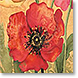 Poppies - Design Collections from Colorful Images
