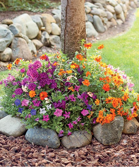 Shop Garden & Outdoor at Colorful Images