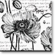 Botanical Black and WHite - Design Collections from Colorful Images