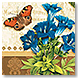 Grande Fleur - Design Collections from Colorful Images